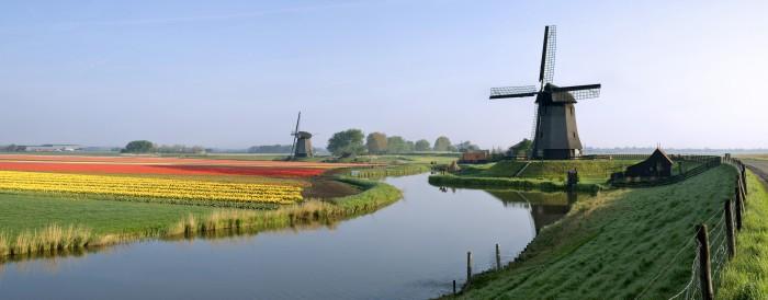 Windmill-11-700x274